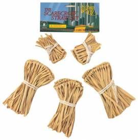 The Scarecrow Straw Set
