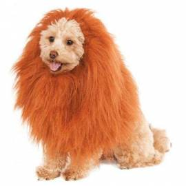 Deluxe Lions Mane Dog Accessory