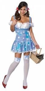 Secret Wishes Dorothy Costume